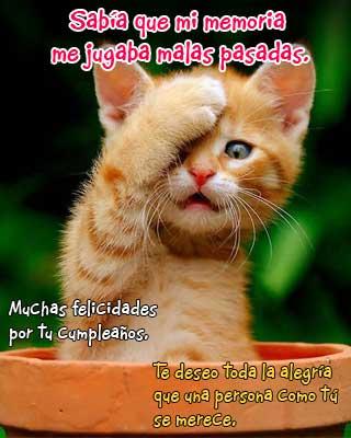FELICIDADES NOHE !!!! Malamemoria